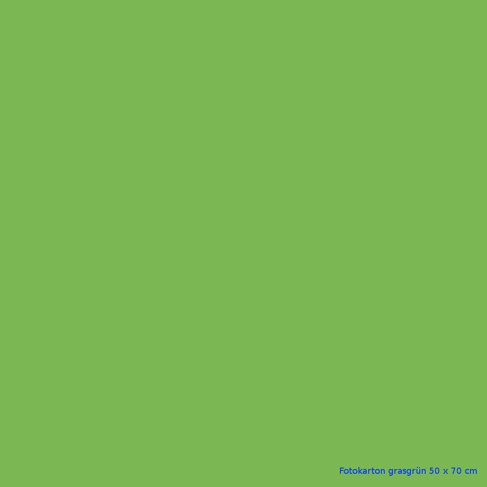 Fotokarton grasgrün