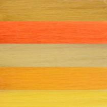 Filzwolle Kammzug 50g Gelbtöne