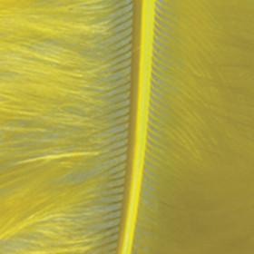 Marabufedern gelb 8 - 10cm 2g