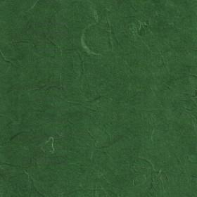 Strohseide dunkelgrün 50x70cm
