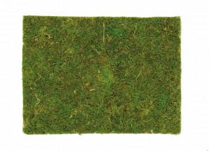 Moosplatte 30x45cm