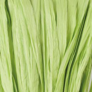 Bast matt lindgrün